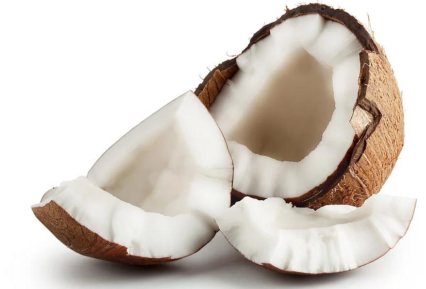 nuca de cocos - plantum-ro