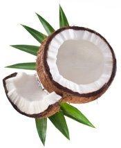 nuca-de-cocos-beneficii-plantum-ro