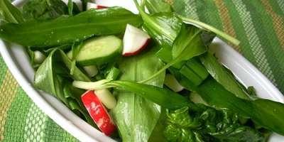 Salată de Leurdă cu Fructe de Păducel