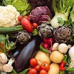 NUTRITIE SI SAVOARE-CANNELLONI DE LEGUME